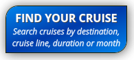 find cruise button