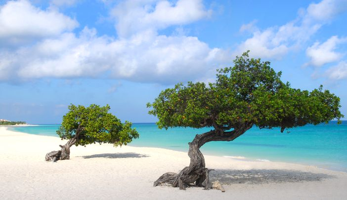 Eagle Beach located in Aruba is definitely among the top 10 beach destinations in the world