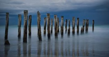Wooden pier at Dunedin, top attractions in New Zealand