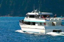 Seward attractions: Kenai Fjords National Park Tours
